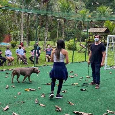 Curso de Adestramento e Comportamento Canino
